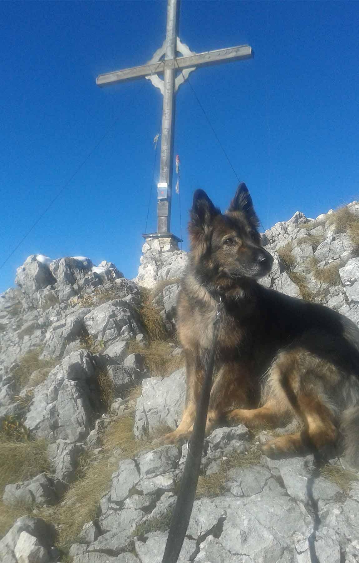 bergwanderführer tirol - wanderung ritzau alm